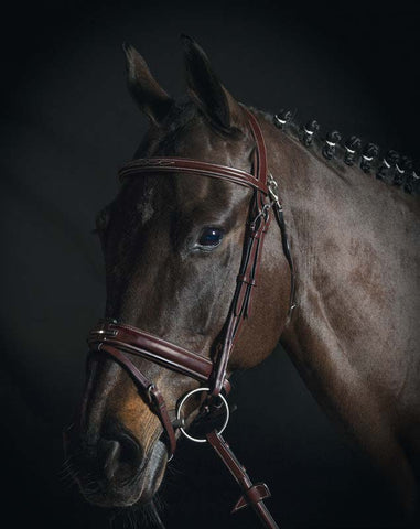 Equiline BS503 Rounded Bridle with Swedish Noseband