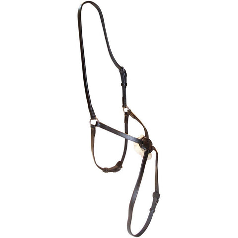 Otto Schumacher Mexican Grackle Noseband