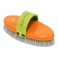 Waldhausen Candy Body Brush 19cm