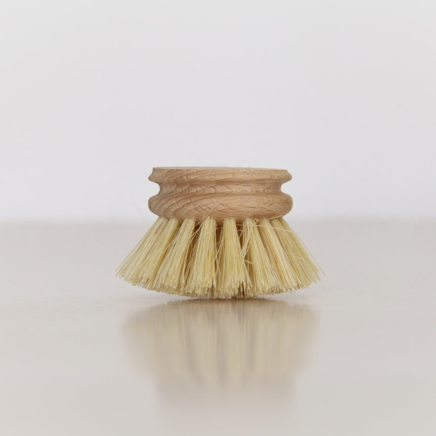 dishwashing brush and replacement head - natural fibre bristles