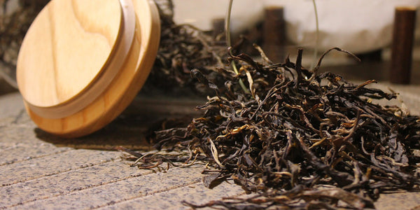 Loose Leaf Tea Tips