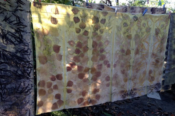Eco Printing and Dyeing Workshops