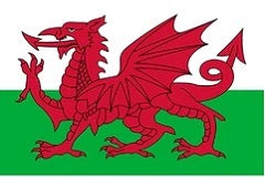 Current flag of Wales since 1959