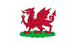 Welsh flag - 1807 to 1953