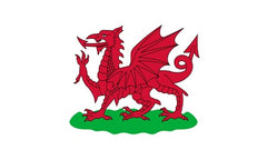 Welsh Flag - From 1807 to 1953
