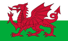 Welsh Flag - Current from 1953