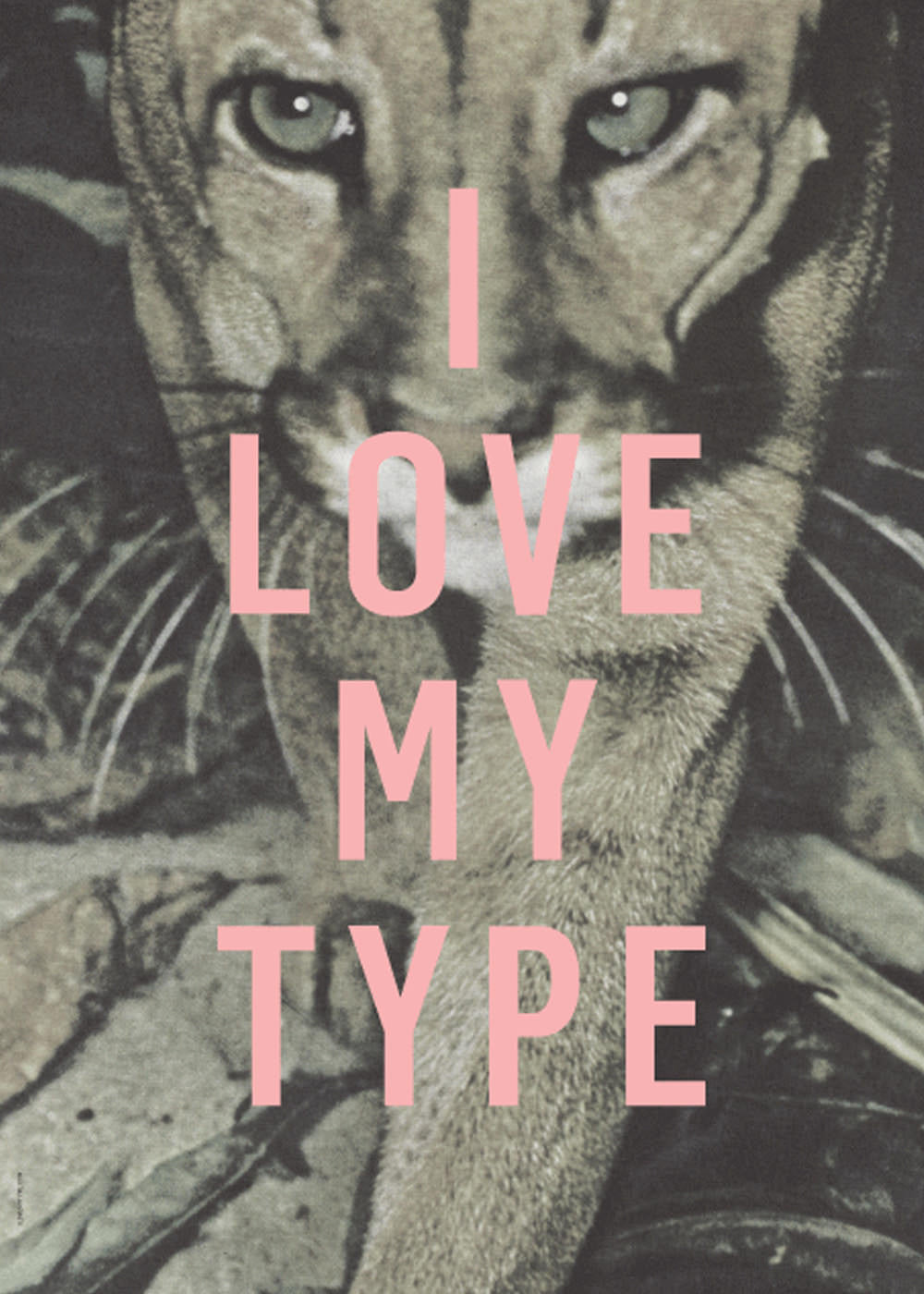 I Love My Type - Puma fra I Love My Type