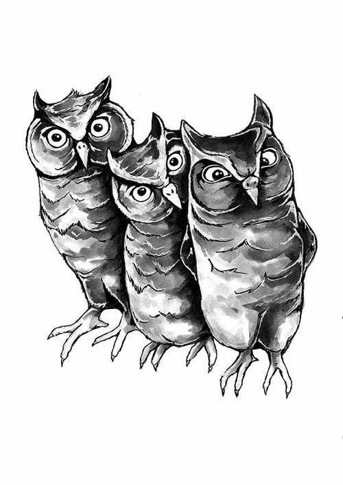 Three Little Owls fra Stine Hvid