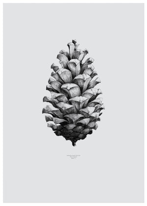 Nature 1:1 Pine Cone, grey fra Paper Collective