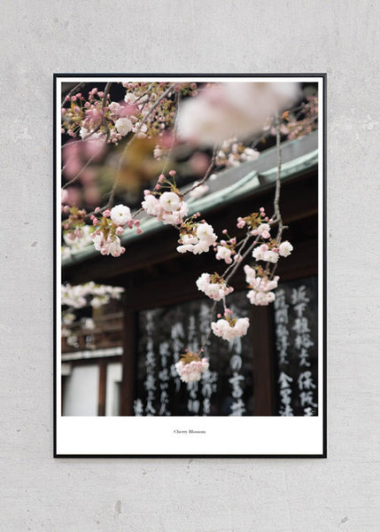 Cherry Blossom + Sort Metalramme fra Beautiful World