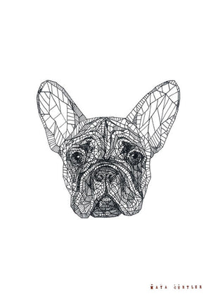 French Bulldog fra Maya Gurtler