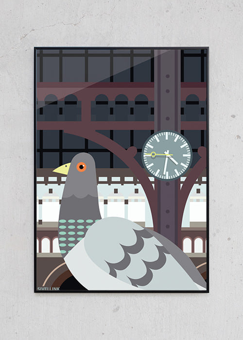 The Pigeon fra Sivellink