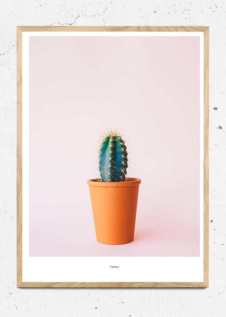Cactus - Beautiful World Plakat fra Beautiful World