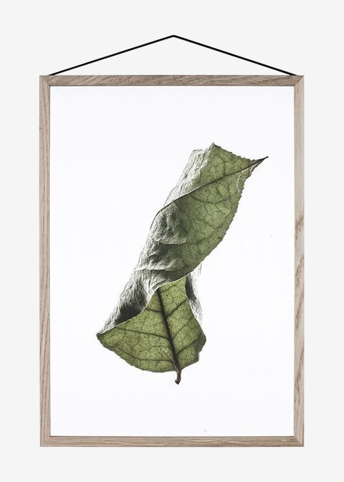 Floating Leaves 04, A2 fra Paper Collective