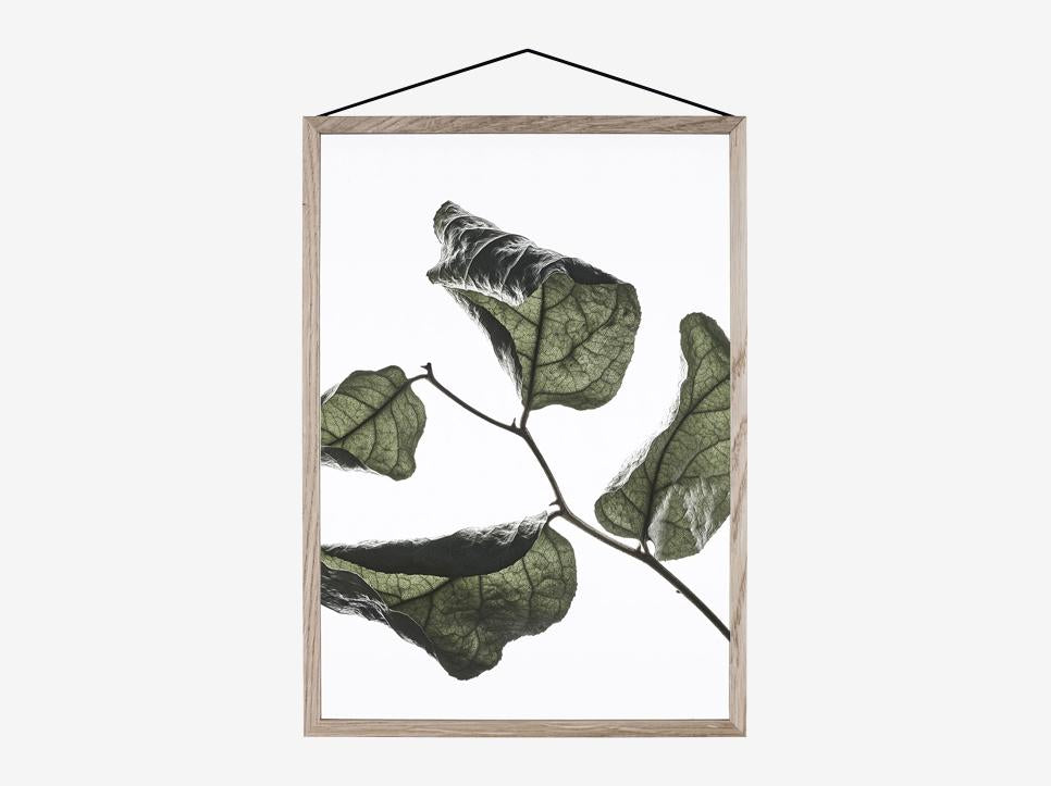 Floating Leaves 03, A4 fra Paper Collective