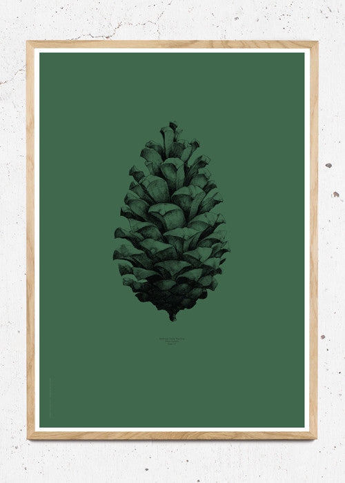 Nature 1:1 Pine Cone, Dark Forest Green fra Paper Collective
