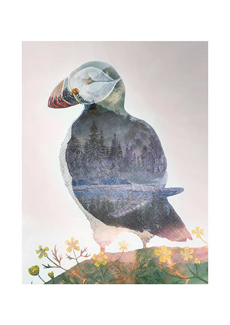 Icelandic Puffin fra Art By Austa Lea