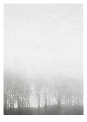 Fotoplakat Morning Fog fra Ingrey Studio