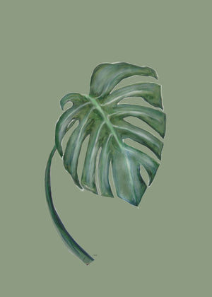monstera the one fra Svenningsenmoller Design