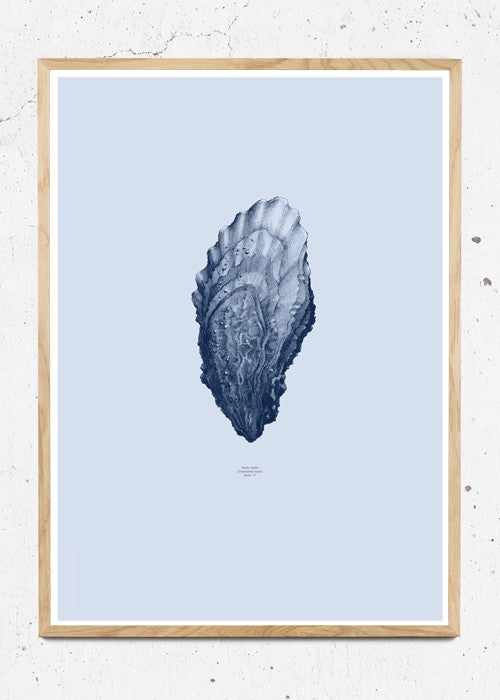Nature 1:1 Oyster, Ocean Blue fra Paper Collective