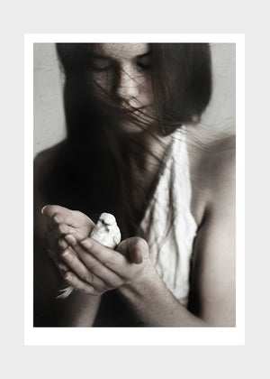 Girl and Bird fra Ingrey Studio