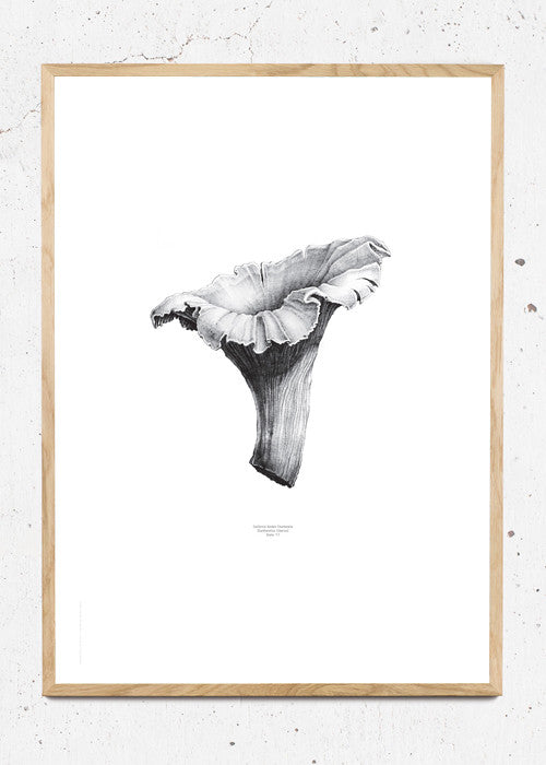 Nature 1:1 Chanterelle, White fra Paper Collective