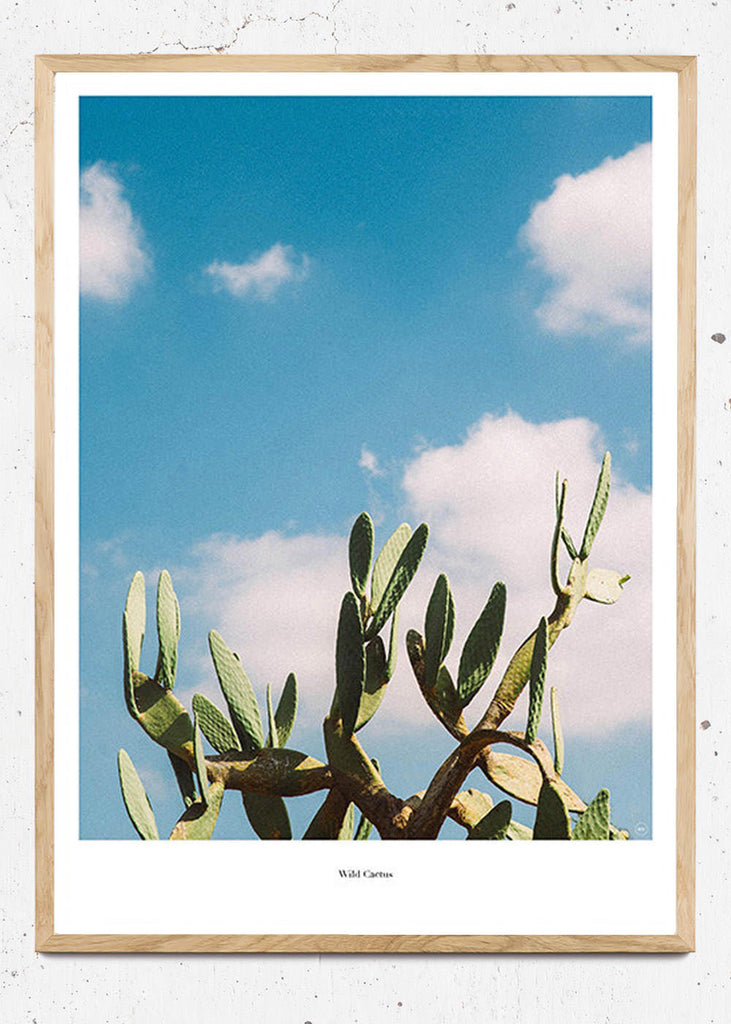 Wild Cactus - Beautiful World Plakat fra Beautiful World