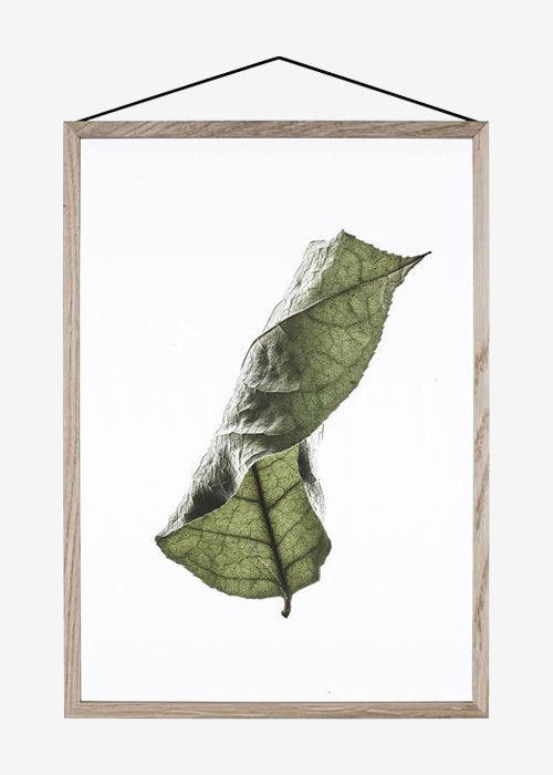 Floating Leaves 04, A3 fra Paper Collective