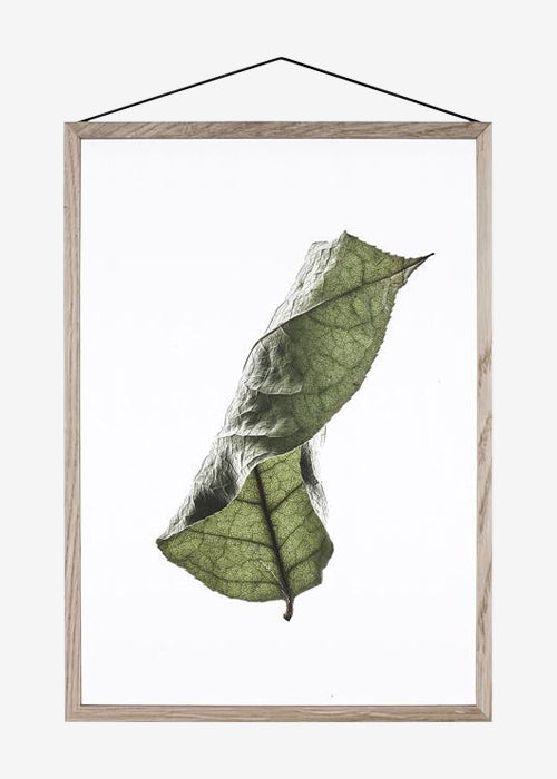 Floating Leaves 04, A5 fra Paper Collective