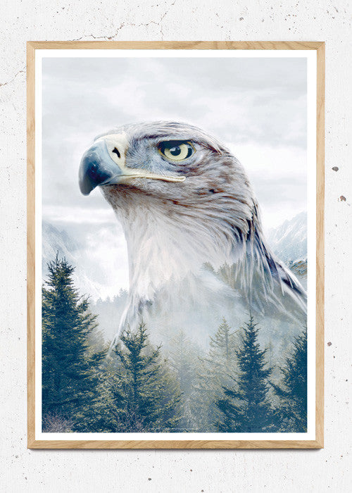 Plakat af Eagle - Portraits fra What We Do
