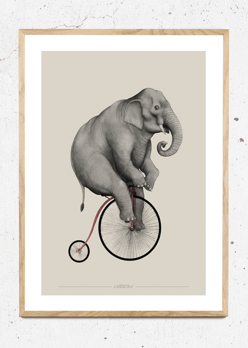 Elephant Riding fra Cellardor