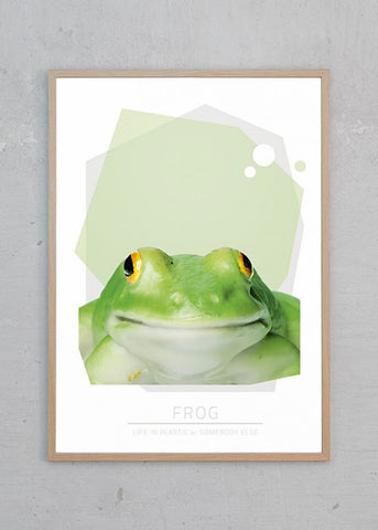 Life In Plastic: Frog