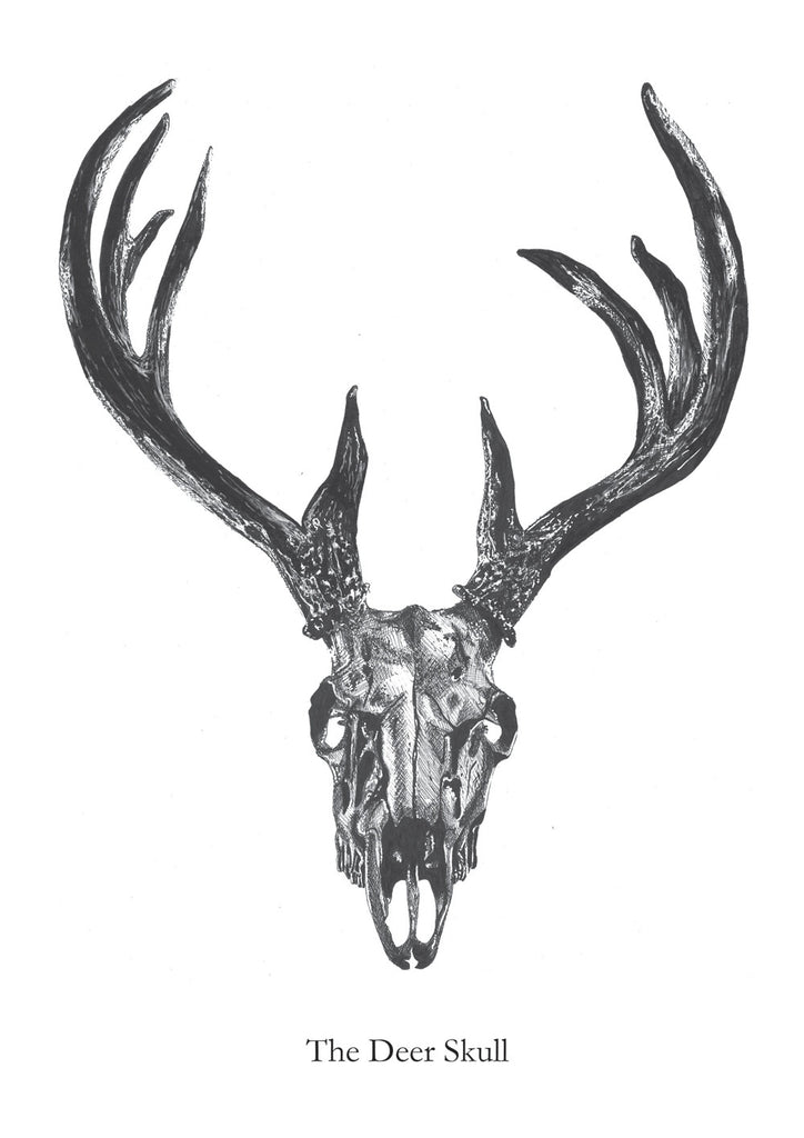 The Deer Skull fra Matilde Olsen