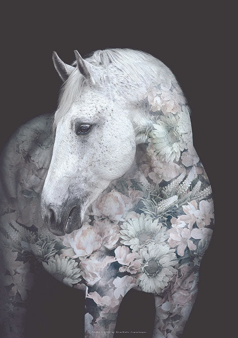Andalusian Horse Flower Portrait fra What We Do