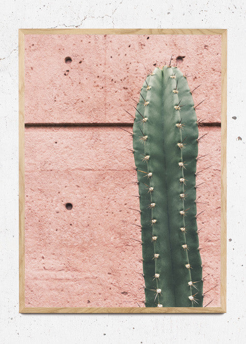 Pink Spikes fra Poster Pusher