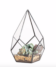 Load image into Gallery viewer, Clear Glass Geometric Terrarium