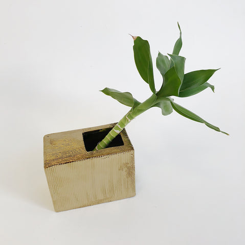 Johan - Gold Rectangle Vase - Portland, Oregon