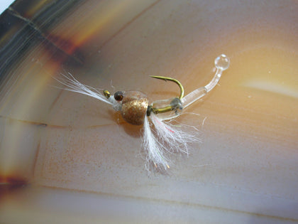 Tungsten Shrimp