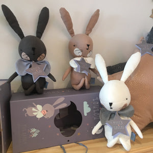 Toy Rabbit with Giftbox