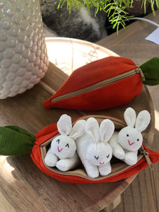 Bunnies in Carrot