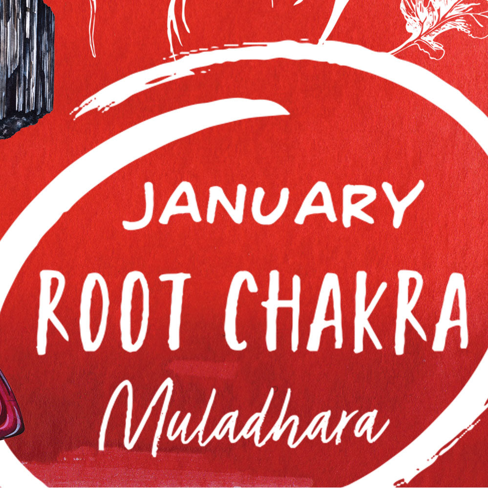 Chakra of the Month - January - Root Chakra - Muladhara