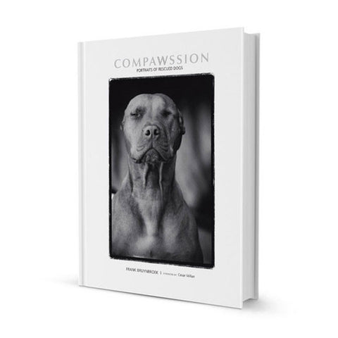 Compawssion: Portraits Of Rescued Dogs