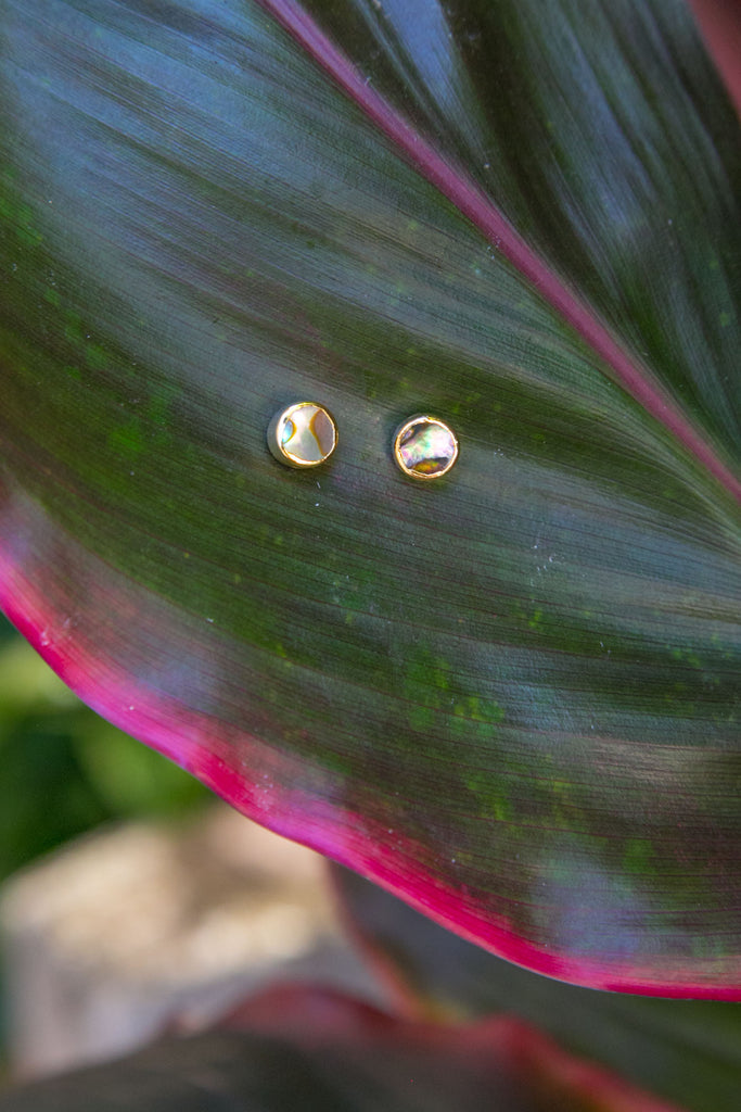 Abalone Stud Earrings - Gold