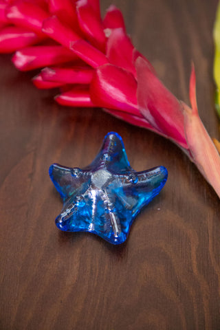 Starfish Paperweight - Dark Blue