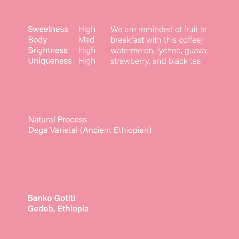 Single Origin - Banko Gotiti, Ethiopia