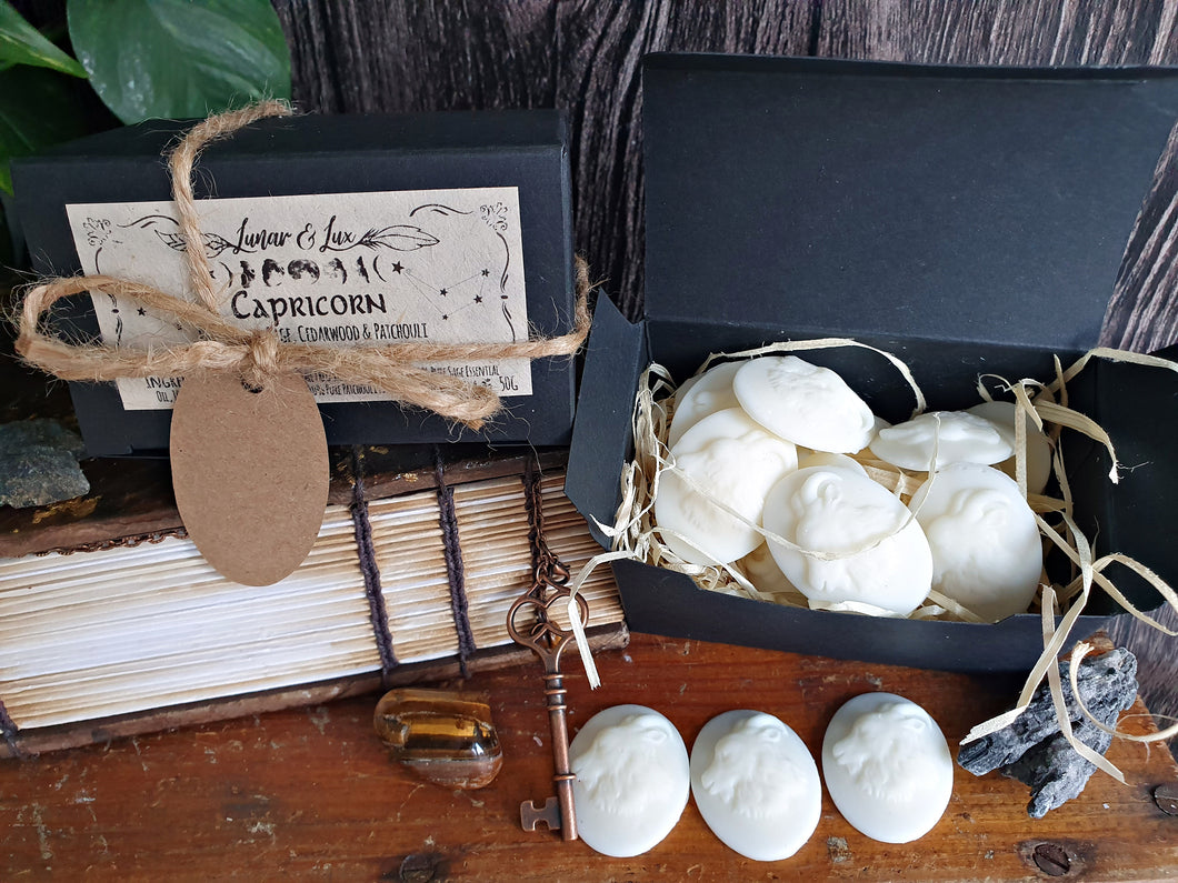 Capricorn Wax Melts