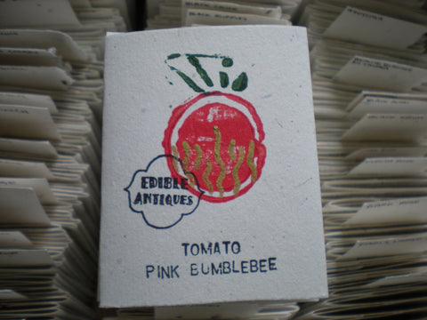 """Pink Bumblebee"" Tomato Seeds - Edible Antiques"