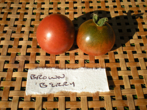 """Brownberry"" Tomato Seeds - Edible Antiques"