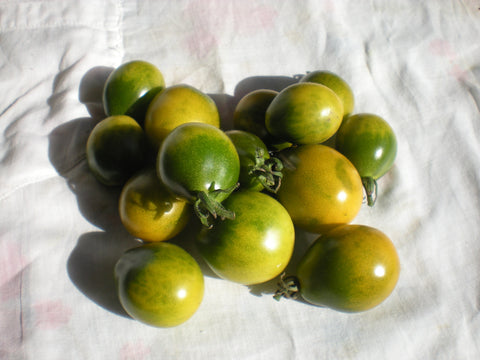 """Green Pear Cherry"" Tomato Seeds - Edible Antiques"