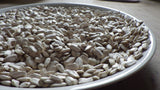 """Tarahumara White"" Sunflower Seeds"